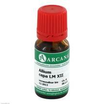 Allium cepa Arcana LM 12 Dilution