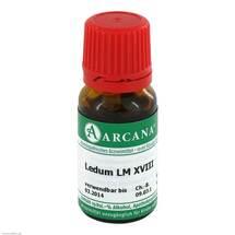 Ledum Arcana LM 18 Dilution