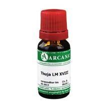 Thuja Arcana LM 18 Dilution