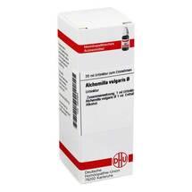 Produktbild Alchemilla vulgaris Urtinktur