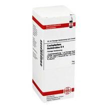 Produktbild Caulophyllum thalictroides D 4 Dilution