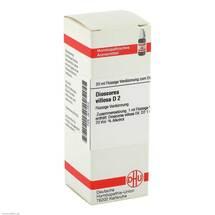 Produktbild Dioscorea villosa D 2 Dilution