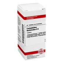 Produktbild Caulophyllum thalictroides D 6 Tabletten