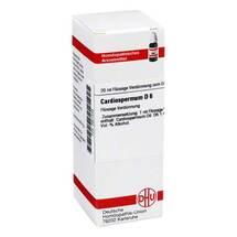 Produktbild Cardiospermum D 6 Dilution