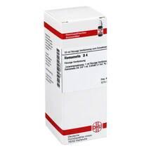 Produktbild Hamamelis D 4 Dilution