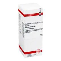 Kalium phosphoricum D 6 Dilution