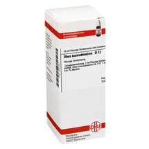 Produktbild Rhus toxicodendron D 12 Dilution