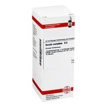 Secale cornutum D 6 Dilution
