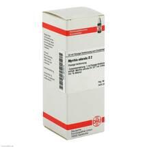 Myrrhis odorata D 2 Dilution