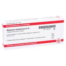 Produktbild Magnesium phosphoricum D 12 Ampullen