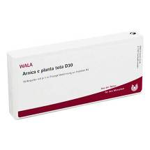 Produktbild Arnica E Planta tota D 30 Ampullen