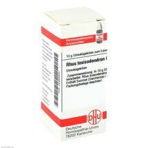 Produktbild Rhus toxicodendron C 200 Globuli