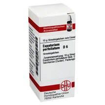 Produktbild Eupatorium perfoliatum D 6 G