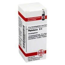 Produktbild Phytolacca D 4 Globuli