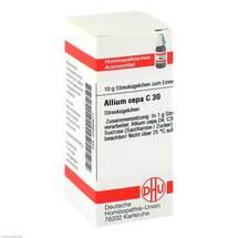 Produktbild Allium cepa C 30 Globuli