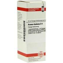 Aranea diadema D 4 Dilution