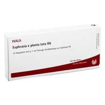 Produktbild Euphrasia E Planta Tota D 6 Ampullen