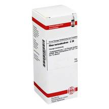 Produktbild Rhus toxicodendron C 30 Dilution