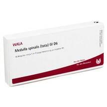 Produktbild Medulla Spinalis Tota GL D 6 Ampullen