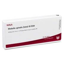 Produktbild Medulla Spinalis Tota GL D 30 Ampullen