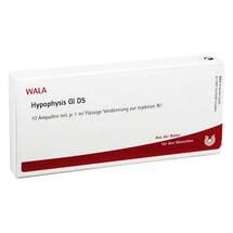 Hypophysis GL D 5 Ampullen