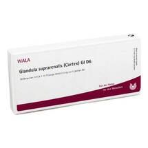 Produktbild Glandula suprarenalis cortex GL D 6 Ampullen