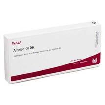 Produktbild Amnion GL D 6 Ampullen