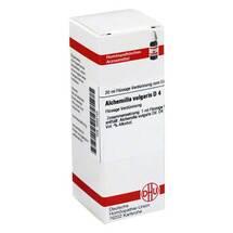 Produktbild Alchemilla vulgaris D 4 Dilution