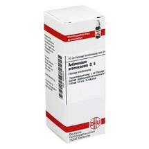 Produktbild Antimonium arsenicosum D 6 Dilution