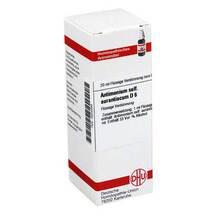 Produktbild Antimonium sulfuratum aurantiacum D 6 Dilution