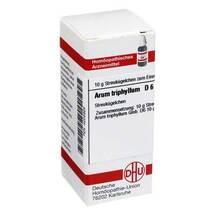 Produktbild Arum triphyllum D 6 Globuli