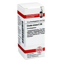 Produktbild Cicuta virosa C 30 Globuli