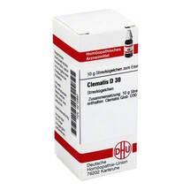 Produktbild Clematis D 30 Globuli