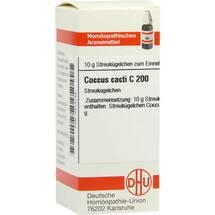 Produktbild Coccus Cacti C 200 Globuli