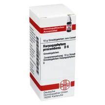 Produktbild Harpagophytum procumbens D 6 Globuli