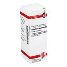 Produktbild Rhus toxicodendron C 6 Dilution