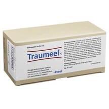 Produktbild Traumeel S Ampullen