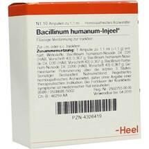 Produktbild Bacillinum humanum Injeel Ampullen