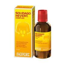Produktbild Solidago Hevert Complex Tropfen