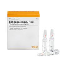 Produktbild Solidago comp.Heel Ampullen