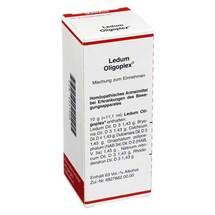 Ledum Oligoplex Liquidum