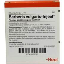 Produktbild Berberis Vulgaris Injeel Ampullen