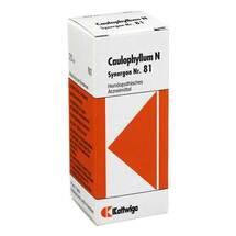 Produktbild Synergon 81 Caulophyllum N T