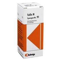 Produktbild Synergon 91 Salix N Tropfen