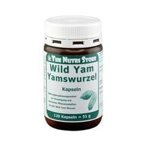 Produktbild Yamswurzel Wild Yam 250 mg Kapseln