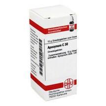 Apocynum C 30 Globuli