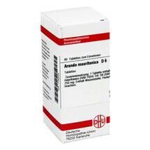 Produktbild Arundo mauritanica D 6 Tabletten