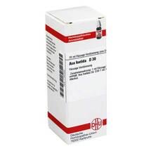 Produktbild Asa foetida D 30 Dilution