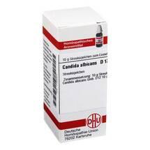 Produktbild Candida albicans D 12 Globuli