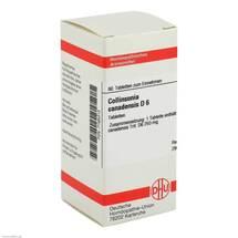 Collinsonia canadensis D 6 Tabletten